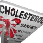 цитоподібна залоза і обмін жирів