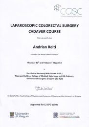 Laparoscopic Colorectal Surgey Cadaver Course